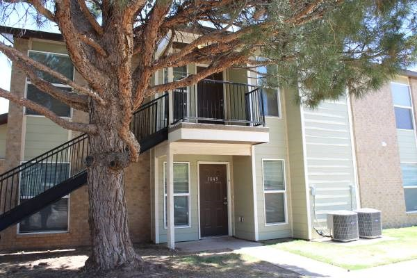 Trees throughout property
